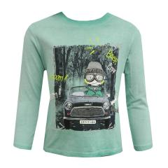 Jungen Langarmshirt Auto, türkis - 304018
