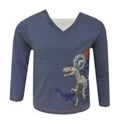 Jungen T-Shirt Langarm  Dinosaurier, grau-blau